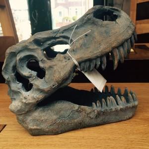 Small T rex 1