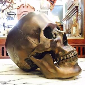 Skull Bronze